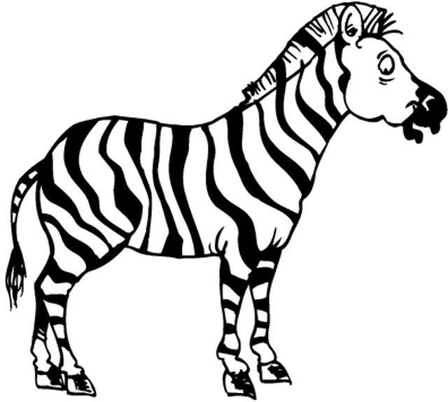 Coloriage Un Zebre En Noir Et Blanc Dessin Gratuit A Imprimer