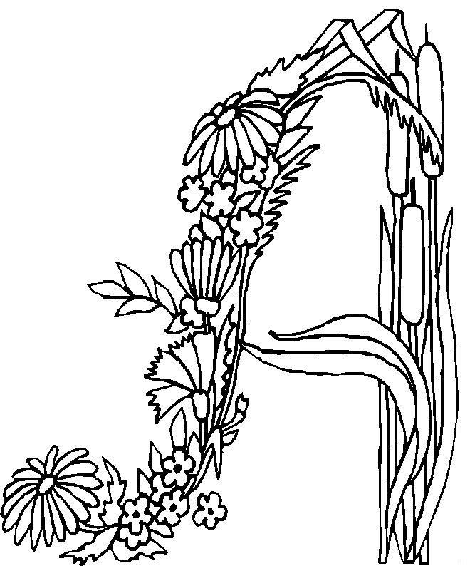 Coloriage et dessins gratuits Fleurs et Lettre N à imprimer