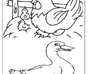 Coloriage Animaux de Ferme 12