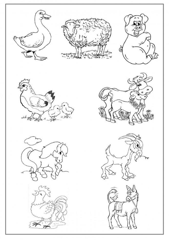 Coloriage Simple Animaux De La Ferme.Coloriage Animaux De Ferme A Telecharger