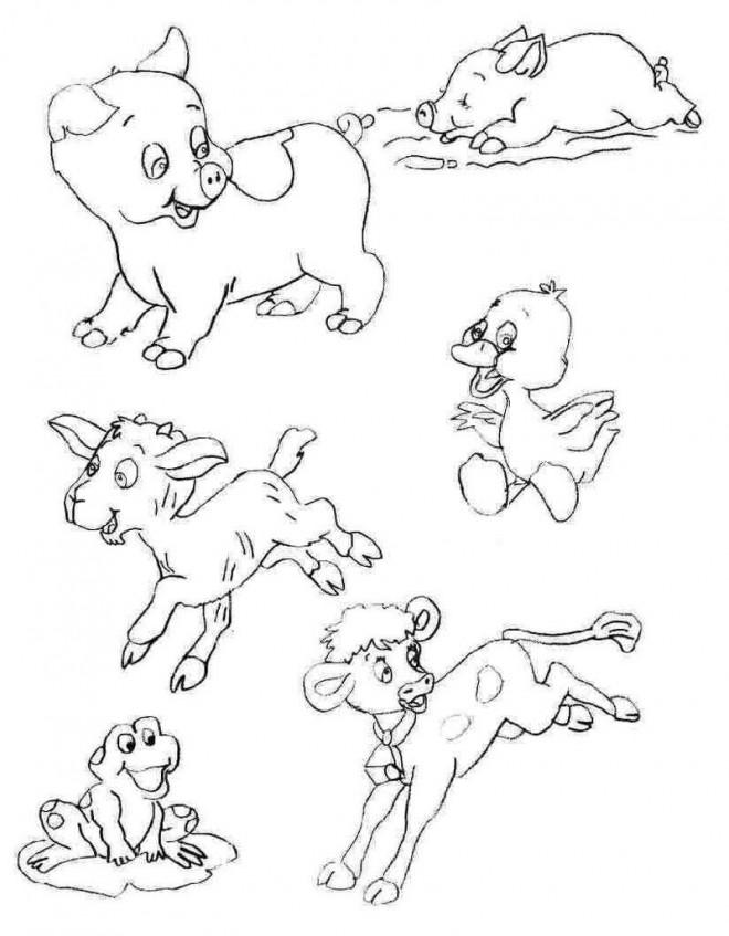 Coloriage et dessins gratuits Animaux de Ferme au crayon à imprimer