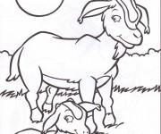 Coloriage dessin  Chevre 29