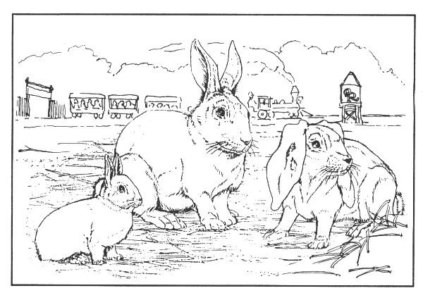 Coloriage et dessins gratuits La Famille des Lapins stylisé à imprimer