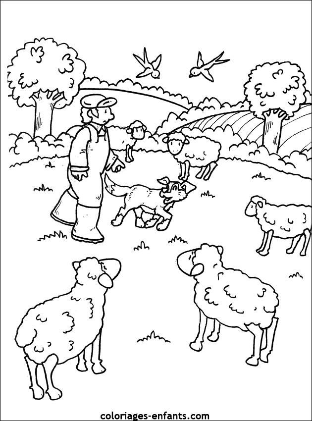 Coloriage les moutons de ferme dessin gratuit imprimer - Coloriage de fermier ...