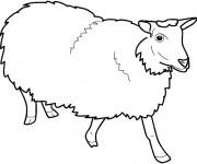 Coloriage et dessins gratuit Mouton de Ferme vecteur à imprimer