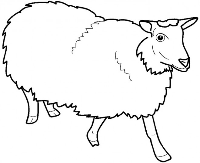 Coloriage et dessins gratuits Mouton de Ferme vecteur à imprimer