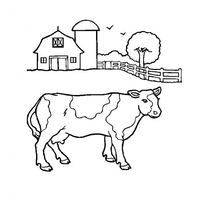 Coloriage une vache de ferme dessin gratuit imprimer - Dessin de ferme ...