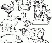 Coloriage et dessins gratuit Animaux de Ferme en noir et blanc à imprimer
