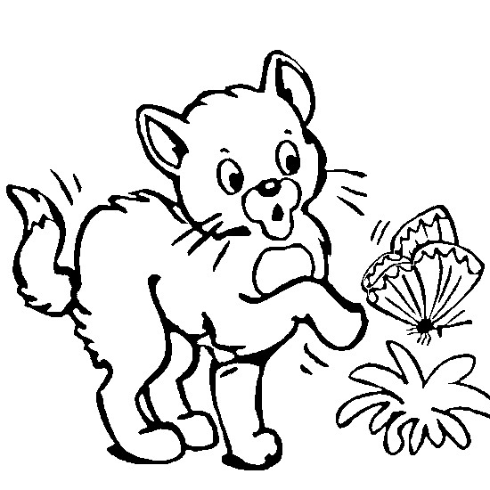 Coloriage Animaux En Ligne 19 Dessin Gratuit à Imprimer
