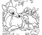 Coloriage et dessins gratuit Animaux En Ligne 40 à imprimer