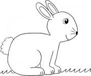 Coloriage Animaux En Ligne gratuit à imprimer liste 40 à 60