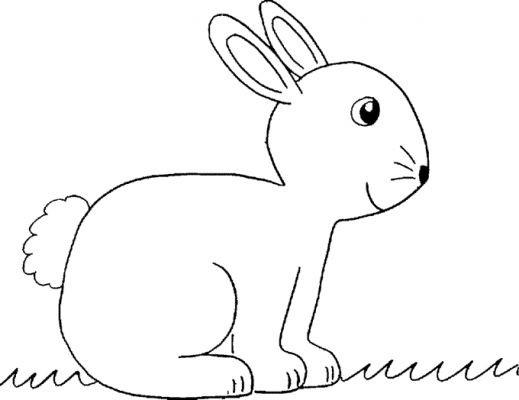 Coloriage et dessins gratuits Animaux En Ligne 41 à imprimer