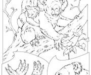 Coloriage et dessins gratuit Animaux En Ligne 69 à imprimer