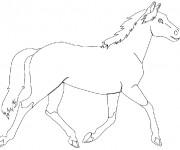 Coloriage et dessins gratuit Animaux En Ligne 71 à imprimer