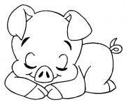 Coloriage et dessins gratuit Cochon dormant à imprimer