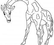 Coloriage et dessins gratuit Girafe adulte à imprimer