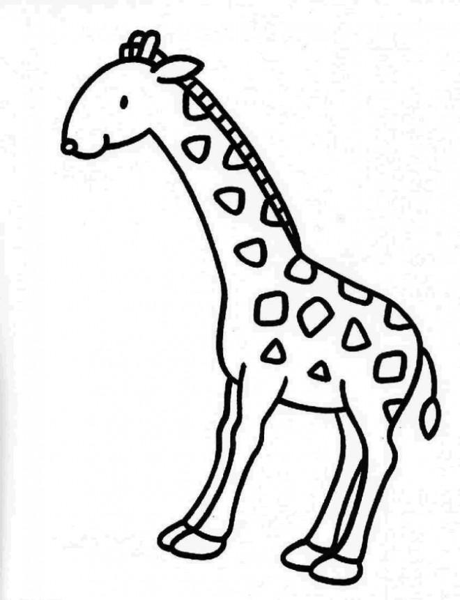Coloriage et dessins gratuits Giraffe facile couleur à imprimer