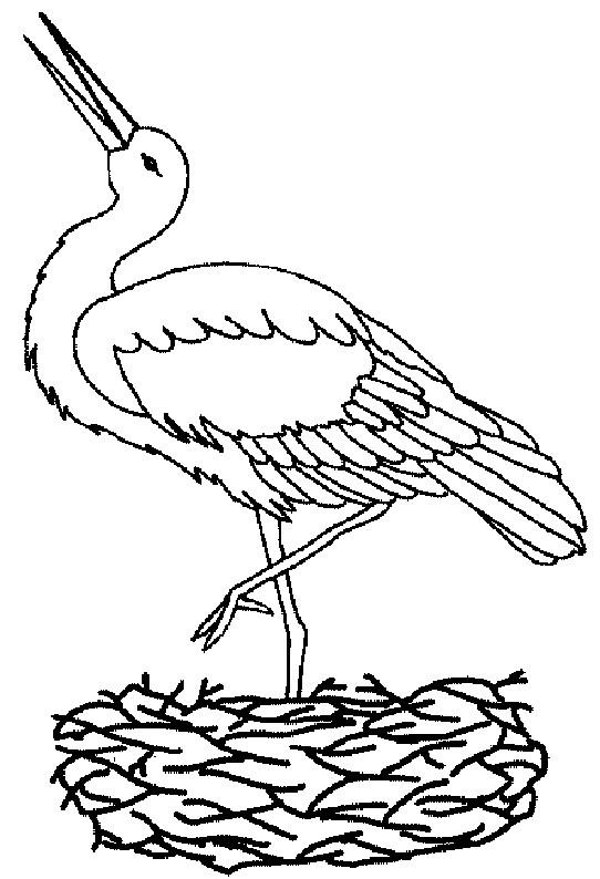Coloriage et dessins gratuits Oiseau En Ligne en noir et blanc à imprimer