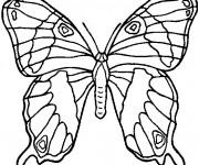 Coloriage et dessins gratuit Papillon En Ligne à imprimer