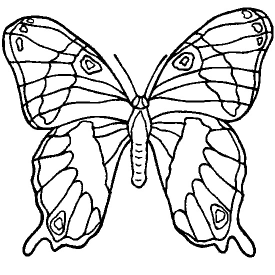 Coloriage Papillon En Ligne dessin gratuit à imprimer