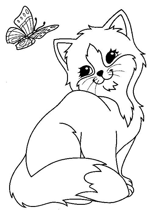 Coloriage et dessins gratuits Papillon et Chat mignon à imprimer