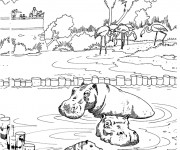 Coloriage et dessins gratuit Zoo 18 à imprimer