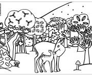 Coloriage Animaux de Forêt