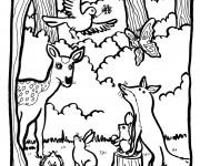 Coloriage dessin  Animaux Foret 2