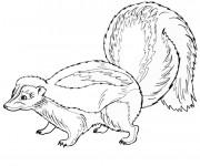 Coloriage et dessins gratuit Animaux Forêt au crayon à imprimer