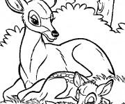 Coloriage et dessins gratuit Cerf et son Petit vectoriel à imprimer