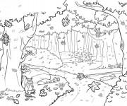 Coloriage Forêt vecteur
