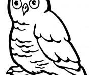Coloriage et dessins gratuit Hibou de La Forêt vectoriel à imprimer