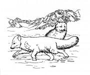Coloriage Les Loupe dans La Montagne