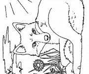Coloriage et dessins gratuit Renard sous le soleil à imprimer
