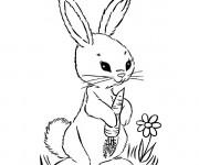 Coloriage et dessins gratuit Un Lapin en noir et blanc à imprimer