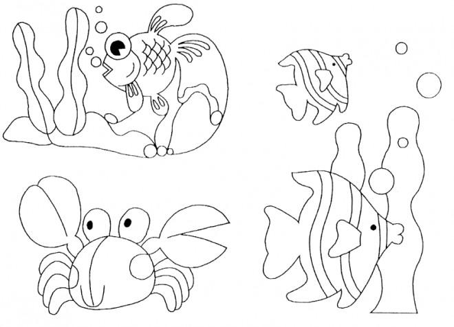 Coloriage Animaux Marins Exotiques Dessin Gratuit à Imprimer