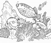 Coloriage dessin  Animaux Marins 14