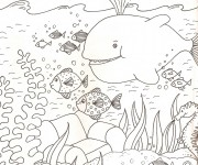 Coloriage dessin  Animaux Marins 2