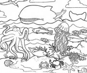 Coloriage dessin  Animaux Marins 7