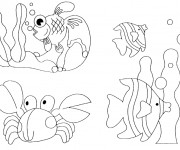 Coloriage Animaux Marins exotiques