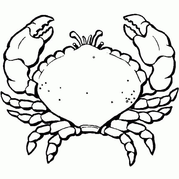 Coloriage et dessins gratuits Cancer de Mer en noir et blanc à imprimer