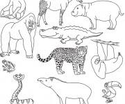 Coloriage et dessins gratuit Animaux de La Savane à imprimer