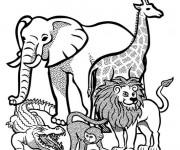 Coloriage Animaux Sauvages d'afrique vecteur