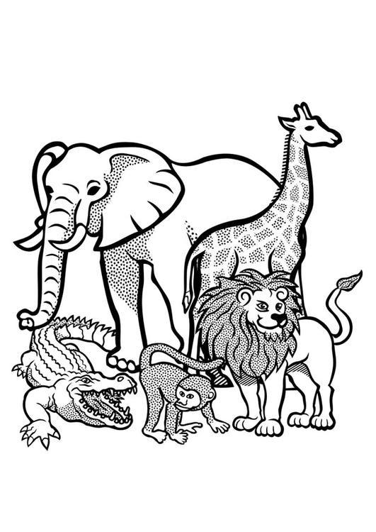 Coloriage animaux sauvages d 39 afrique vecteur dessin gratuit imprimer - Dessin d animeaux ...