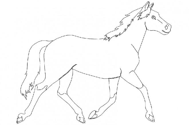 Coloriage cheval qui galope dessin gratuit imprimer - Coloriage animaux sauvages ...