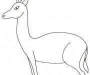 Coloriage Gazelle Sauvage