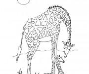 Coloriage Girafe d'Afrique