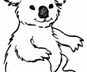 Coloriage Koala au crayon noir