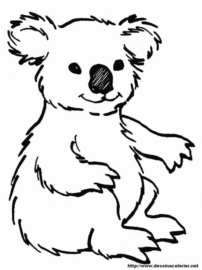 Coloriage et dessins gratuits Koala au crayon noir à imprimer