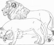 Coloriage et dessins gratuit Lion et Lionne stylisé à imprimer
